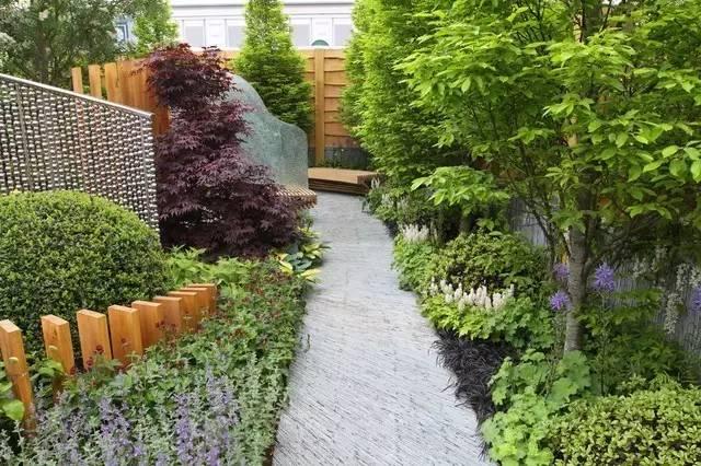 庭院种植这些植物,让家里风水好上加好